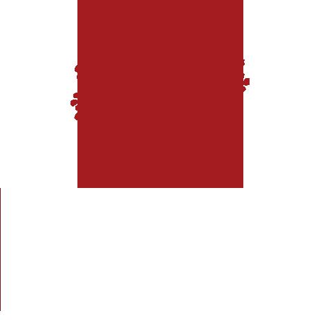 tree-roots-award